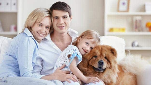 Wills & Trusts dog-young-family Direct Wills Friday Hill